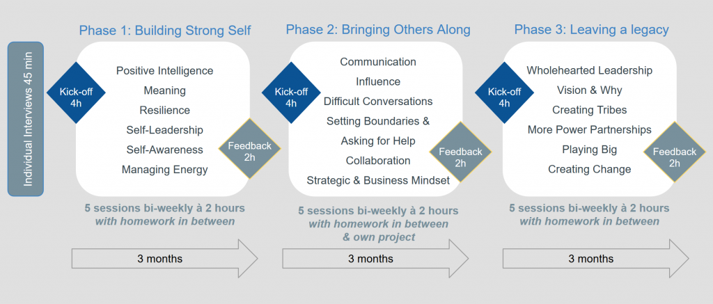 Power Partnerships phases